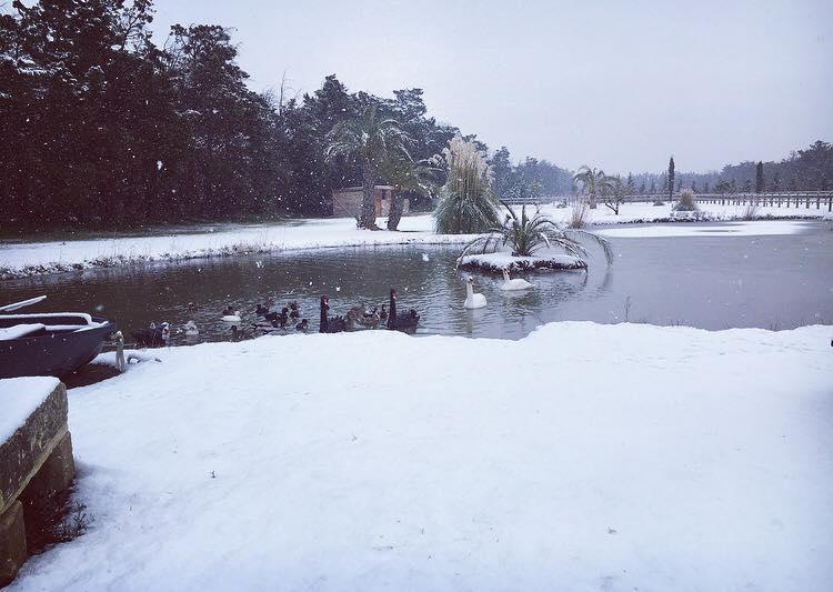 Un Noel sous la neige à l'Abri Cosy