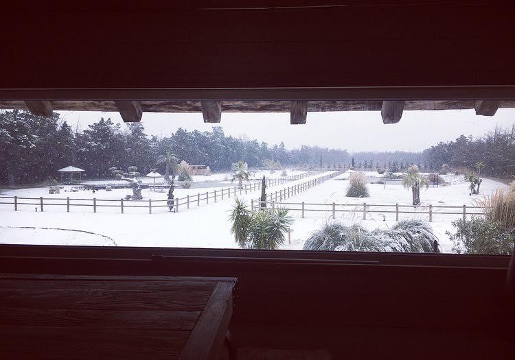 Un Noël romantique en Camargue à l'Abri Cosy sous la neige!