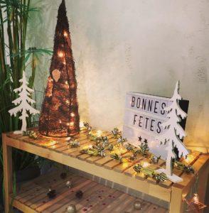 Un Noël romantique en Camargue à l'Abri Cosy!